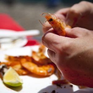 Nordsee Urlaub für Anfänger Küstenglück Krabben puhlen